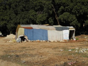 ラマー村の空き地に建てられた避難民テント